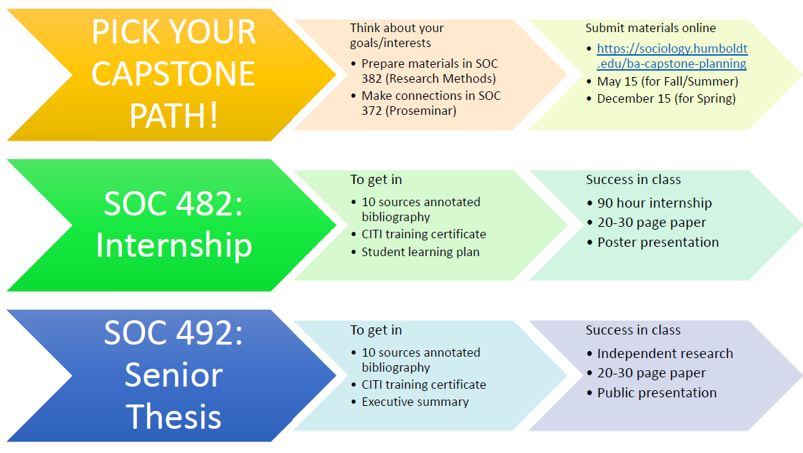 pick your capstone path